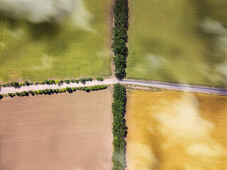 Wall Mural - Aerial top view from drone above crossed roads on agricultural fields.
