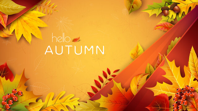 Autumn illustration for text with fallen leaves