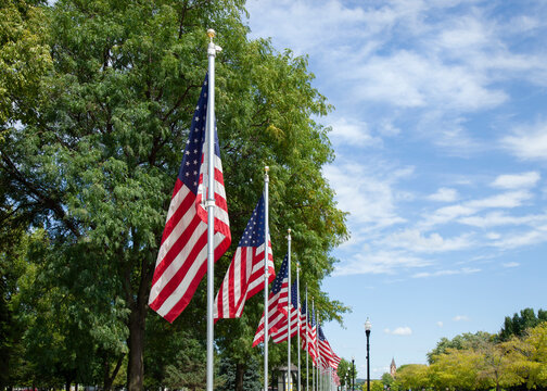 Flags in a display honoring veterans along a street in a small town