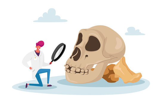 Scientist Watching through Magnifying Glass on Huge Human Skull. Anthropologist Work on Excavations Exploring Artifact