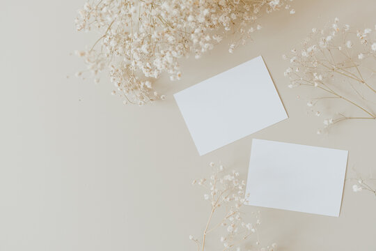 Blank paper cards with mockup copy space and gypsophila flowers on beige background. Minimal business brand template. Flat lay, top view.