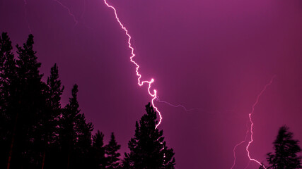 Bright bolt lightning in the dark purple sky against the forest background