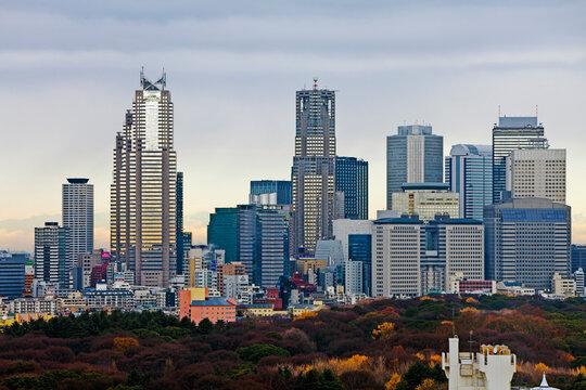 Asia, Japan, Tokyo, Shinjuku skyline viewed from Shibuya - elevated