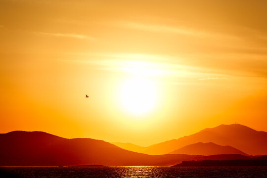 sunset over the sea and mountains, with a bird in flight