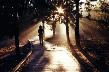 Person Walking in Grove Path at Sunrise