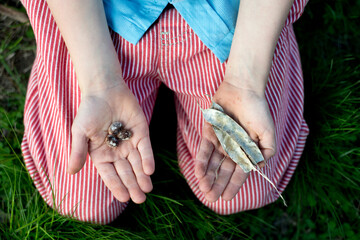 Child's hands hold beans and their shell