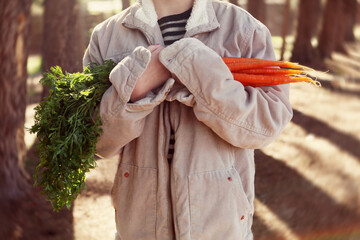 Child in oversized jacket holding fresh carrots with stems - mid section showing only