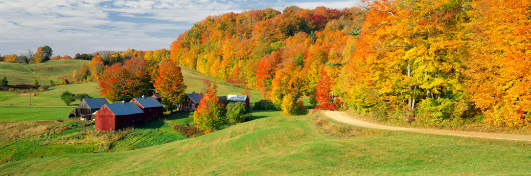 Fall foliage surrounding red barns at Jenne Farm in South Woodstock, Vermont, New England, North America