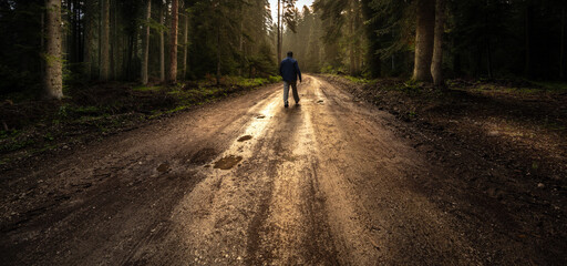 Man walk on a dirt road in a forest among tall green trees illuminated by the sunrise sun