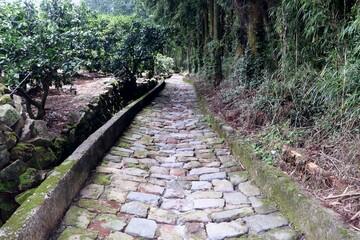 夏目漱石ゆかりの地 草枕の道