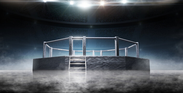 MMA Ocnagon. Bottom view. Sport. Fighting Championship. Fight night. MMA octagon on the light