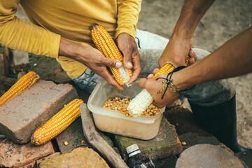 Cultivating Corn Papier Peint