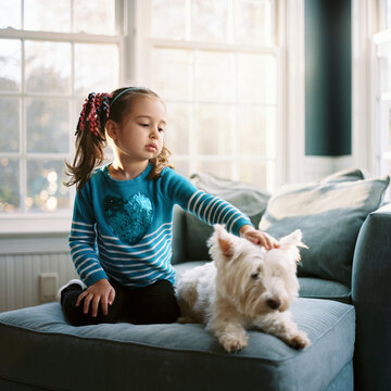 Beautiful young girl sitting on a chair with a cute white dog
