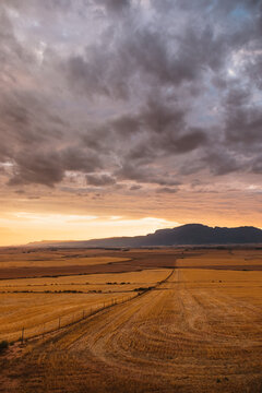 rural farmland landscape during a dramatic golden sunset