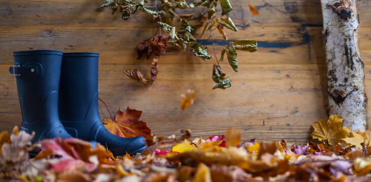 Autumn composition with rubber boots in front of a leafy wooden background thanksgiving festivities invitation authentic autumn weather nature decoration bio diy natural background text space