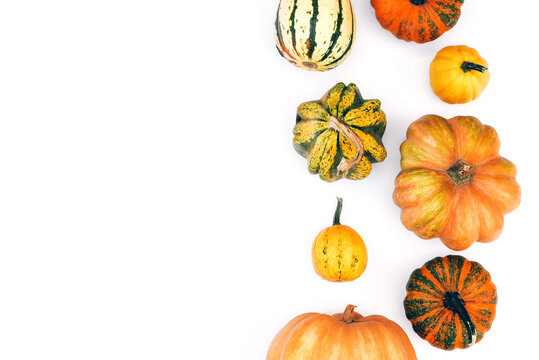Autumn flat lay on an isolated white background made of pumpkins.