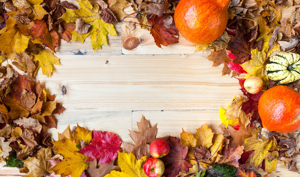 Autumn composition with colorful leaves and apples and pumpkins on a light wooden table, free space background, decorative thanksgiving, festivities, seasons, colorful