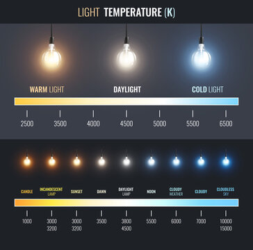 Light Temperature Scale Infographics