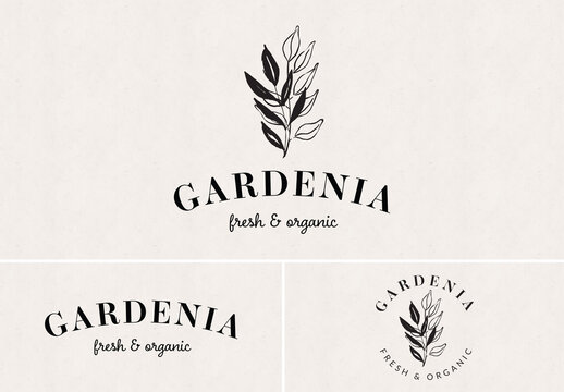 Logo Design Set with Botanical Illustration