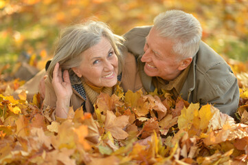 Portrait of beautiful senior couple relaxing in park