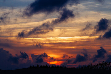 Colorful sunset and clouds over grassy dune