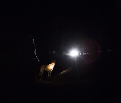 Car lights light up man walking dog at night