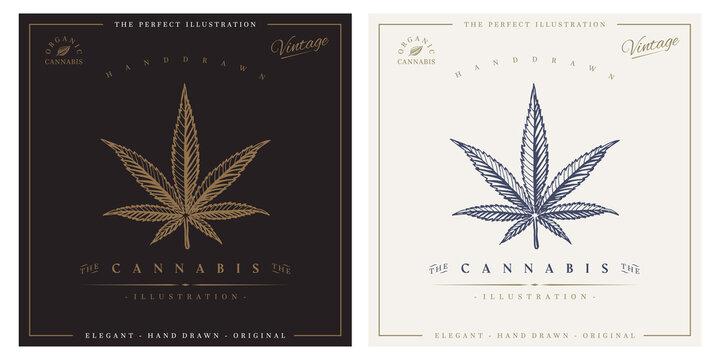 Cannabis vintage logo engraving illustration