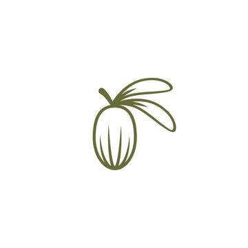 Shea nut green icon. vitellaria beauty and cosmetics oil. Cosmetic ingredient carotene, carotin.
