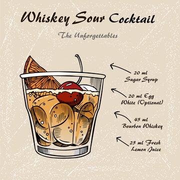 Whiskey sour cocktail recipe vector illustration sketch 2