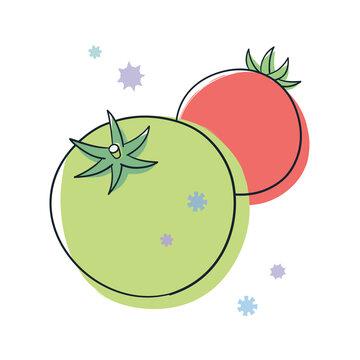 緑色と赤色のトマトとウィルス