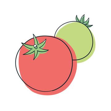 赤色と緑色のトマト