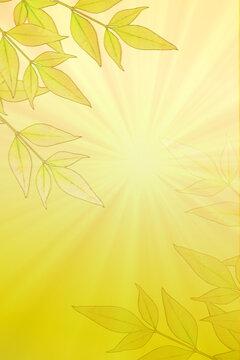 Leaves on Sunburst
