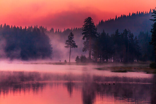 Mystic Purple Lake