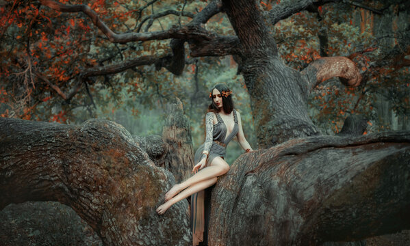 Young beautiful sad woman in the image of the Greek goddess sits on a autumn tree. Creative forest nymph costume, long dress, gold wreath on her head, long hair. Sexy bare legs. Fashion model posing