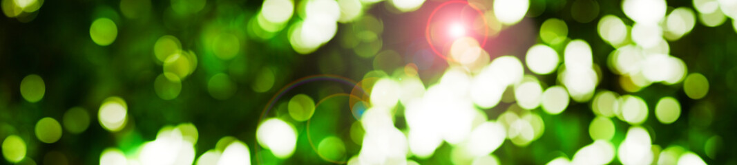 abstract green background with bokeh