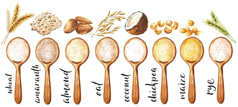 Watercolor flour in spoon illustration, set of different types of grains, beans and nuts isolated on white background. Watercolour food illustration.