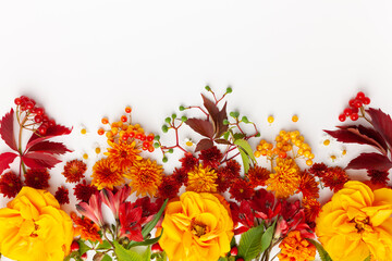 Papiers peints Fleur Autumn composition with flowers, leaves and berries on white background. Flat lay, copy space.