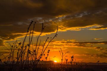 niebo chmury natura zachód słońca światło widok