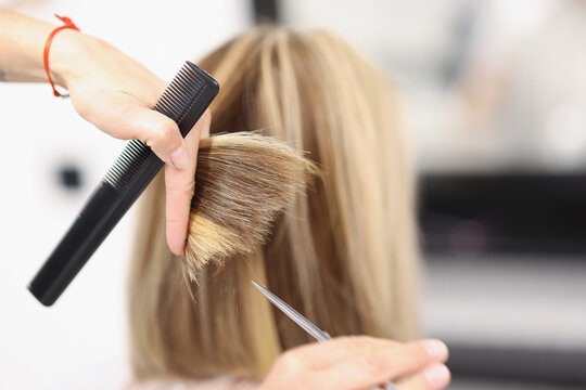 Hairdresser holds scissors and comb in his hand and cuts the ends of hair. Beauty salon services concept