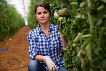 Portrait of successful female horticulturist in greenhouse near bushes with ripening purple tomatoes