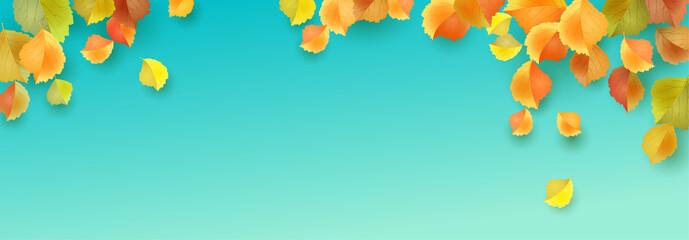 Autumn Leaves Banner