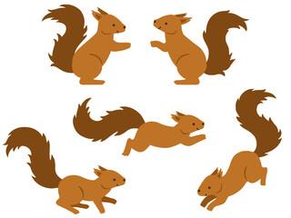 Papiers peints Squirrel リスのイラストセット