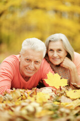 Happy senior couple posing on autumn leaves