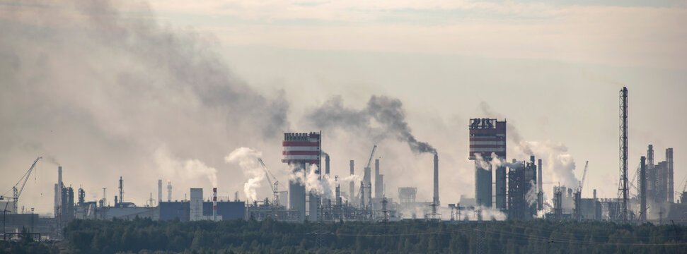 The plant damaging the environment by emissions of toxic gases into the atmosphere.