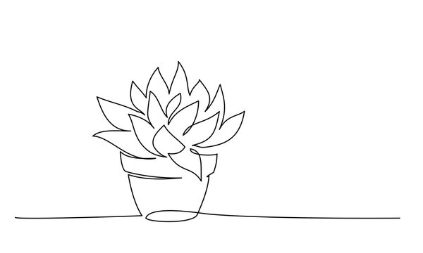 House plant in pot. Continuous one Line drawing