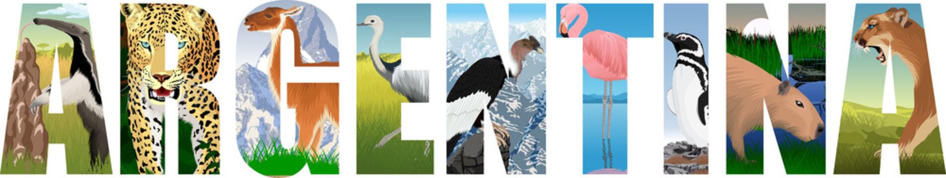 vector set of Argentina word with animals: anteater, jaguar, lama, greater rhea, Andean condor , Pink flamingo, Magellanic penguin, Capybara and puma