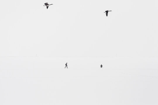Walkers and fliers on Lake Michigan