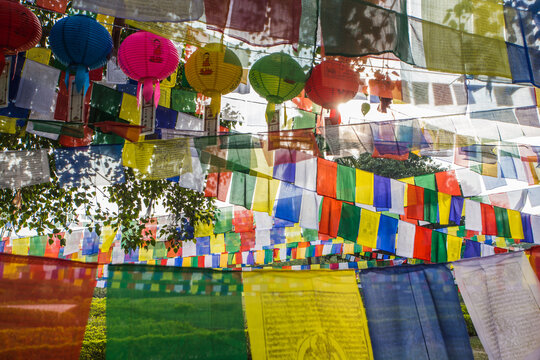 Bodhi tree and prayer flags in the Park of Lumbini