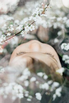 Double exposure portrait of a sleeping baby and blooming trees full of white flowers