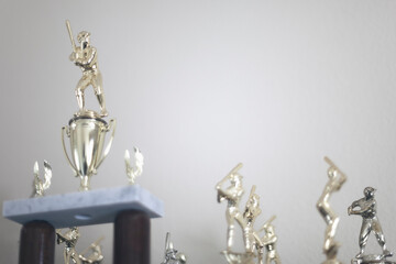 Sports Trophies Received by Kids